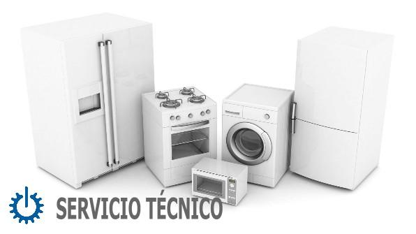 tecnico Siemens Cádiz